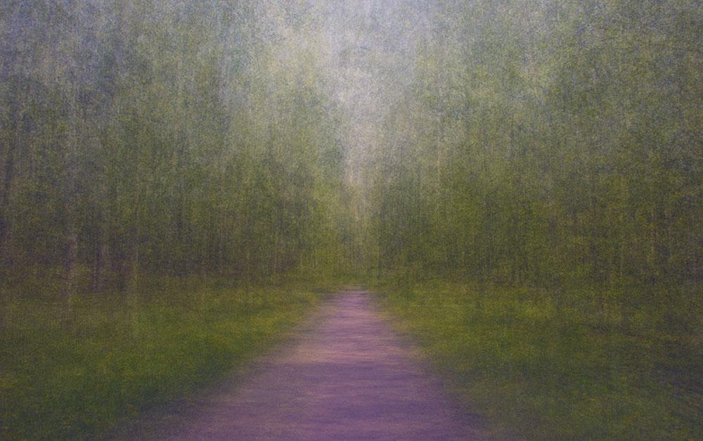 EEvaKarhu_Path12
