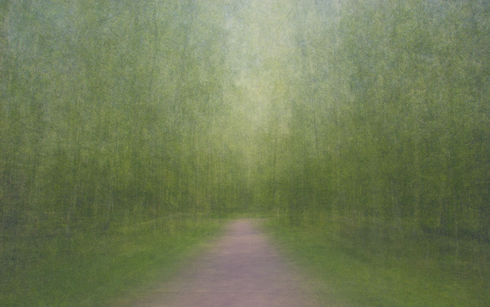 EevaKarhu_Path11