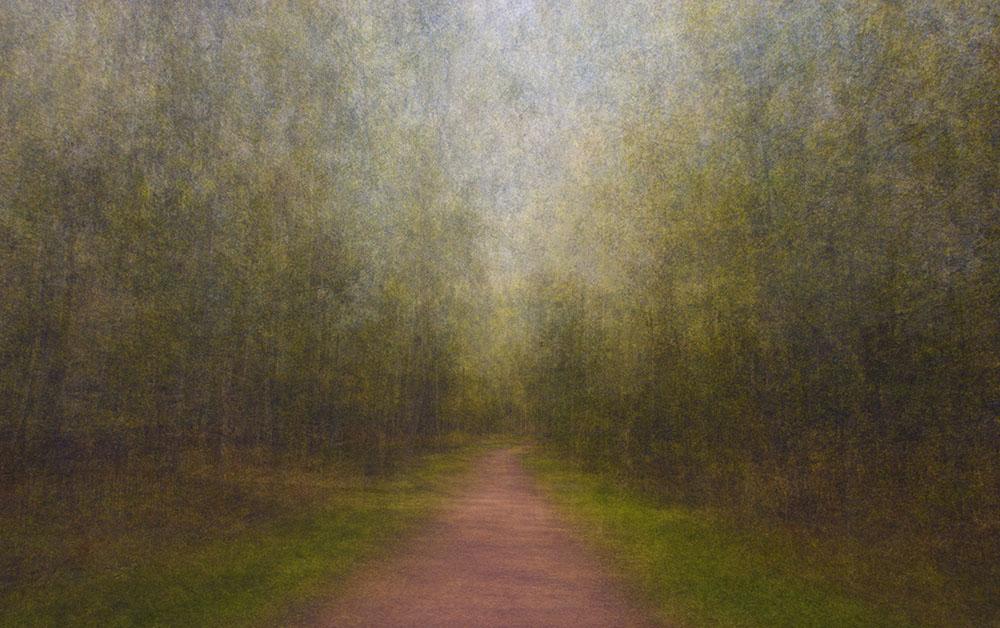 EevaKarhu_Path15