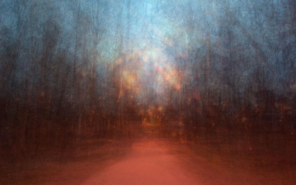 EevaKarhu_Path(artificial light)9