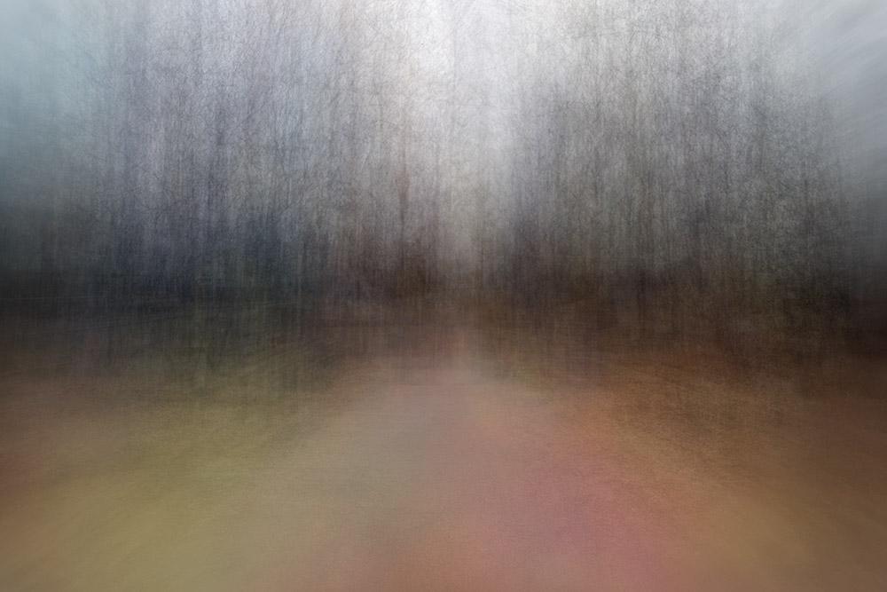 EevaKarhu_Path(seasons)spring2
